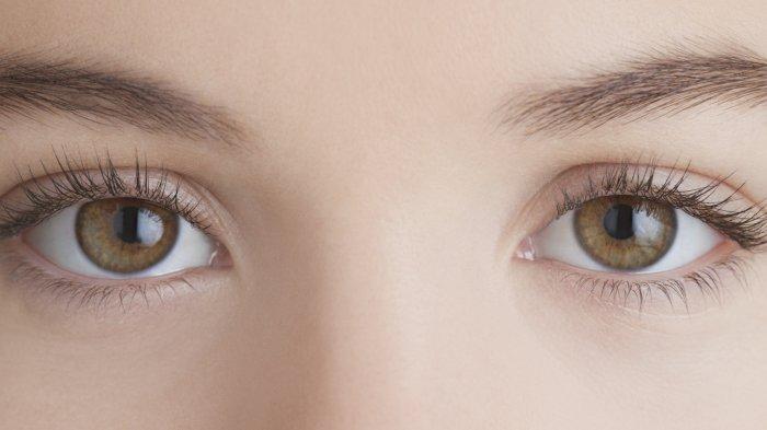 Tips Bermanfaat untuk Pemakai Lensa Kontak Baru